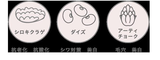 シロキクラゲ ダイズ アーティチョーク