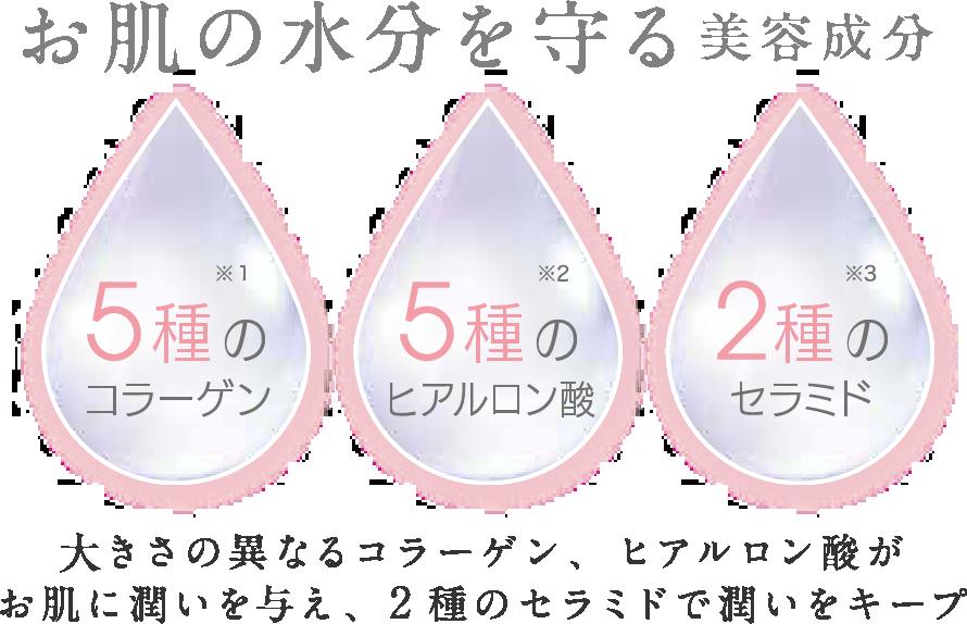 お肌の水分を守る美容成分 5酒のコラーゲン*1 5種のヒアルロン酸*2 2種のセラミド*3 大きさの異なるコラーゲン 、ヒアルロン酸がお肌に潤いを与え、2種のセラミドで潤いをキープ